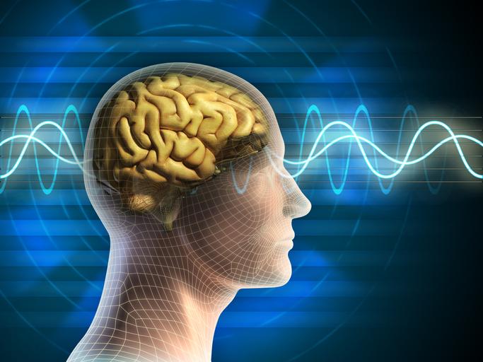 Comment la respiration synchronise les ondes du cerveau